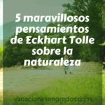 5 maravillosos pensamientos de Eckhart Tolle sobre la naturaleza